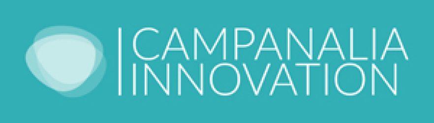 CAMPANALIA INNOVATION –     Motores especiales  y electrónica de potencia
